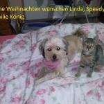 Linda und Speedy